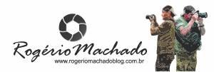 Noticias, informações, politica, polícia, saúde. Rogério Machado Blog – Sarandi e Norte do RS